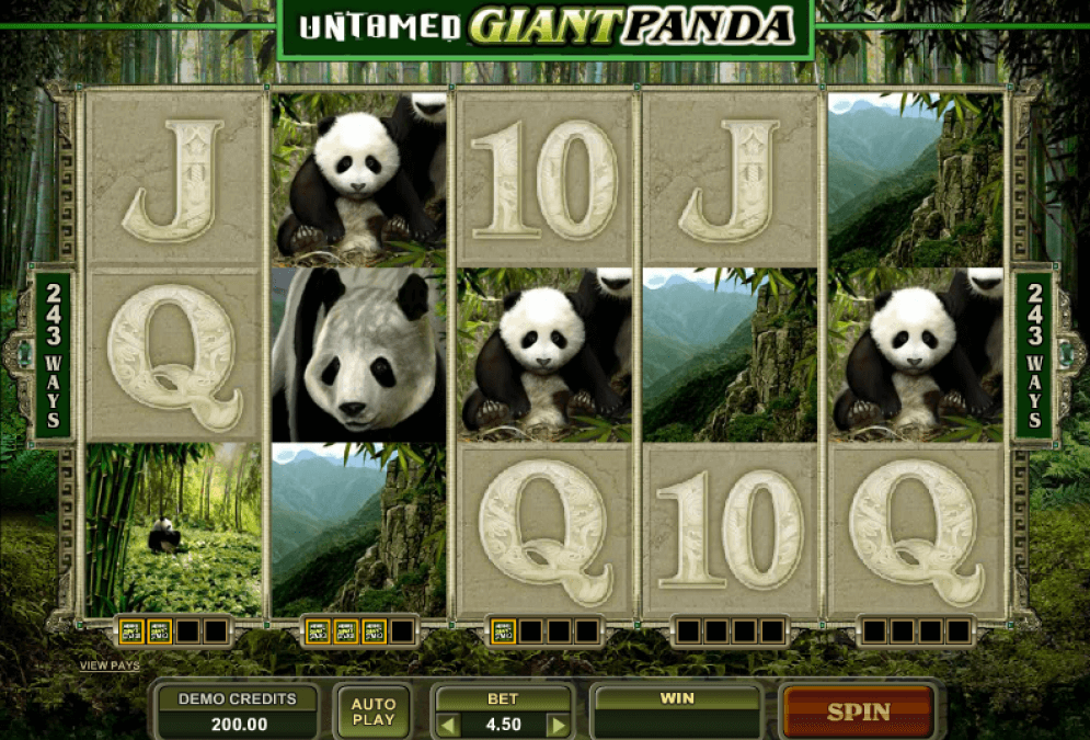 243 Winning Ways from Giant Panda